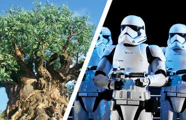 Left: The Tree of Life at Disney's Animal Kingdom Theme Park. Right: Storm Troopers stand at Disney's Hollywood Studios at Star Wars: Rise fo the Resistance.