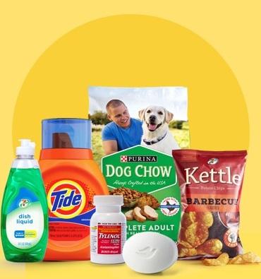 v3-7NOW-basic-essentials-food-soap-medicine-snacks-pet-food-on-yellow.jpg