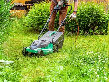 Your Guide to Buying the Best Lawn Mowers