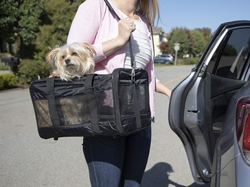 Your Guide to the Best Pet Carriers