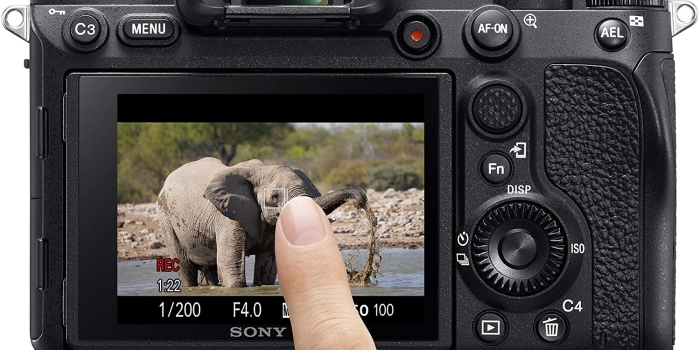 mirorless camera