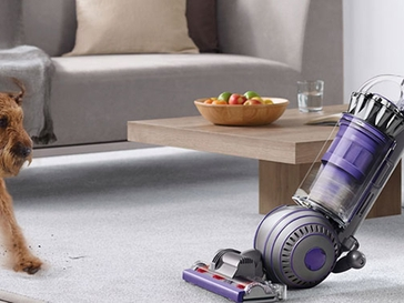 The Best Vacuums for Pet Hair Removal