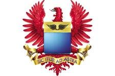 Fuerza_aerea.png
