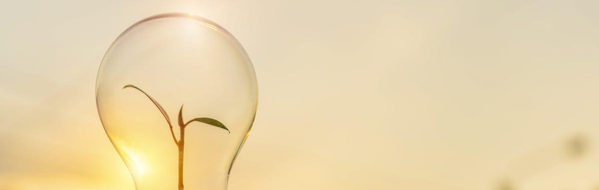 Una forma de cuidar la energía en casa es optando por focos ahorradores.