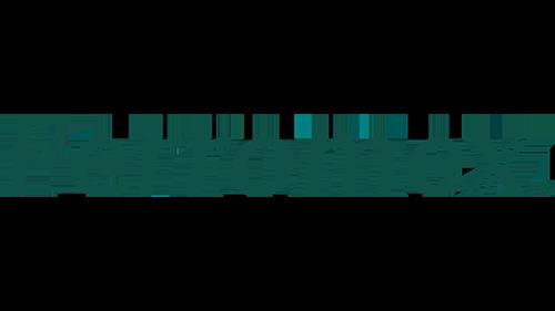Ferromex logo