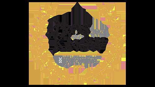 2021 pros to know logo