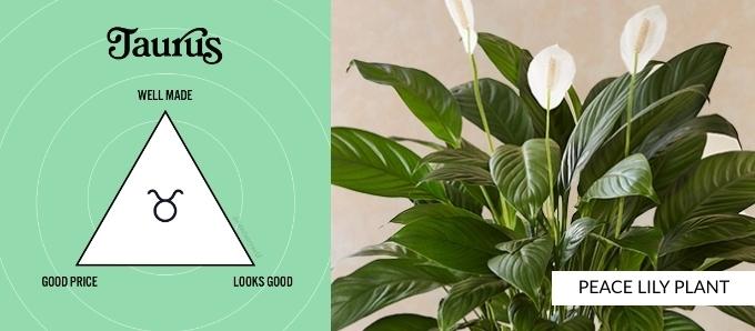 zodiac-plants-taurus.jpg