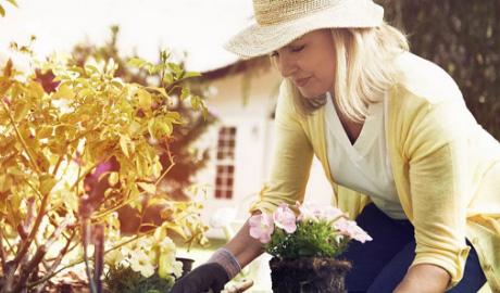 How To Create A Memory Garden