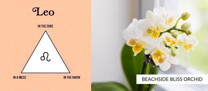 zodiac-plants-leo.jpg
