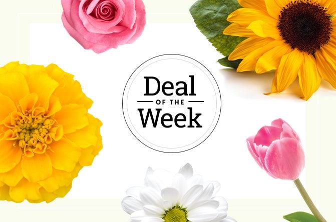 deal-of-the-week-everyday.jpg