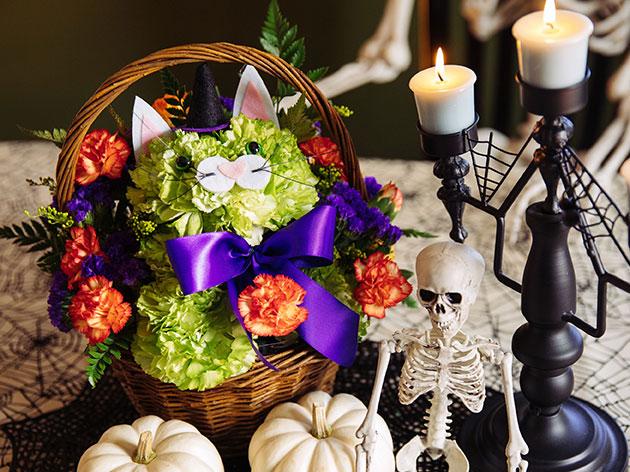 Halloween is 10/31