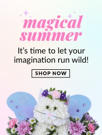 Magical Summer Gifts