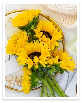 Sunsplash Sunflower