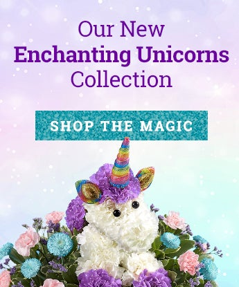 Enchanting unicorn