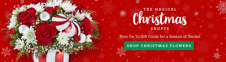 The Magical Christmas Shoppe