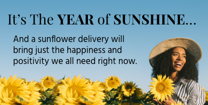 It's The Year of Sunshine