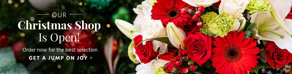 christmas-flowers-zone10-dt.jpg