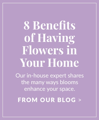 8 Benefits of Having Flowers in Your Home