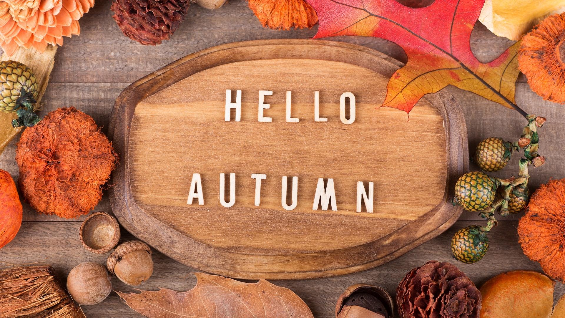 Autumn Hello
