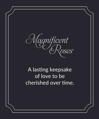 Magnificent Roses