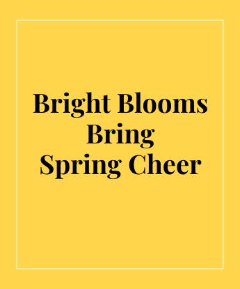 Bright Blooms Bring Spring Cheer