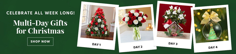 Christmas Multi-Day Gifting