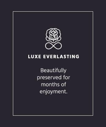 Luxe Everlasting