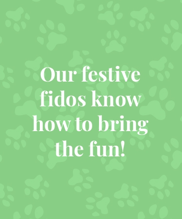 Our festive fidos know how to bring the fun!