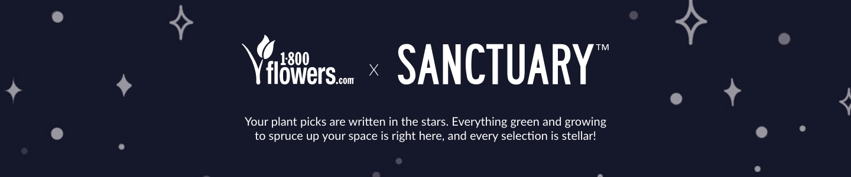 sanctuaryworld-imoc.jpg