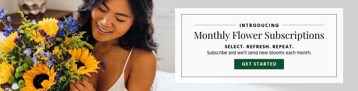 Subscriptions-hp-zone10-v3.jpg