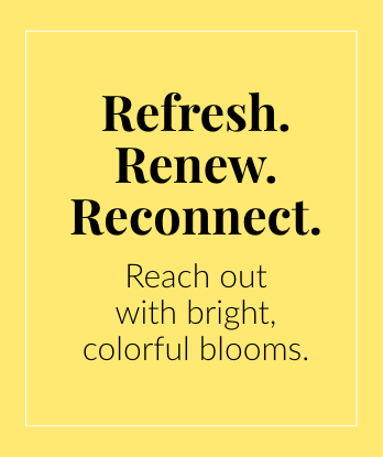 Refresh. Renew. Reconnect