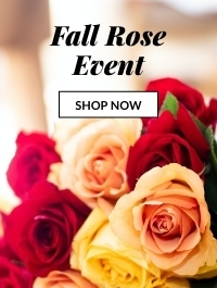 Fall Rose Event