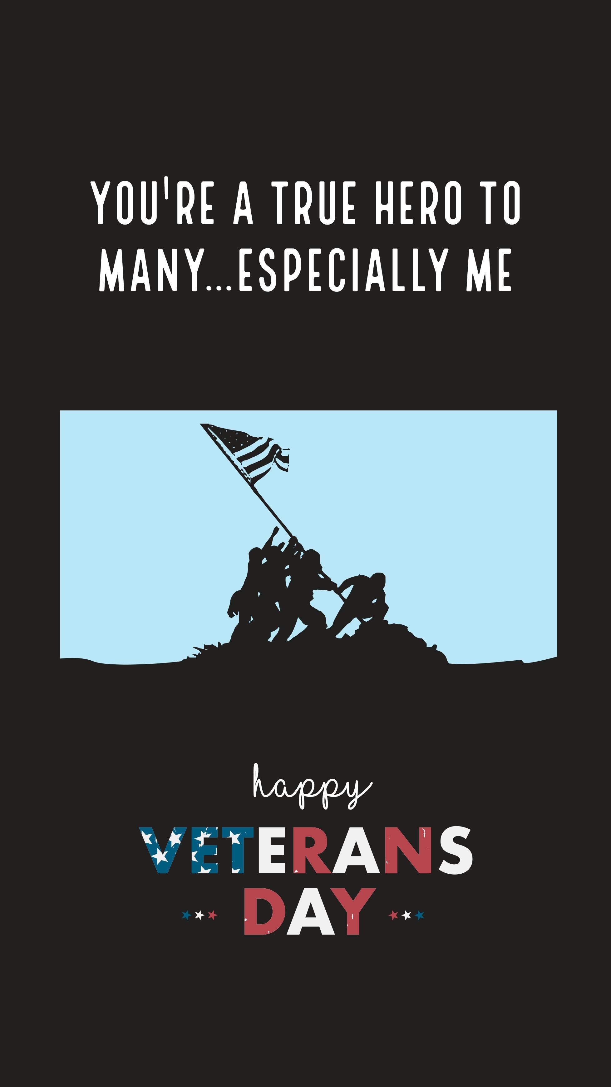 Veterans 7