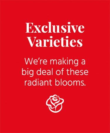 Exclusive Varieties