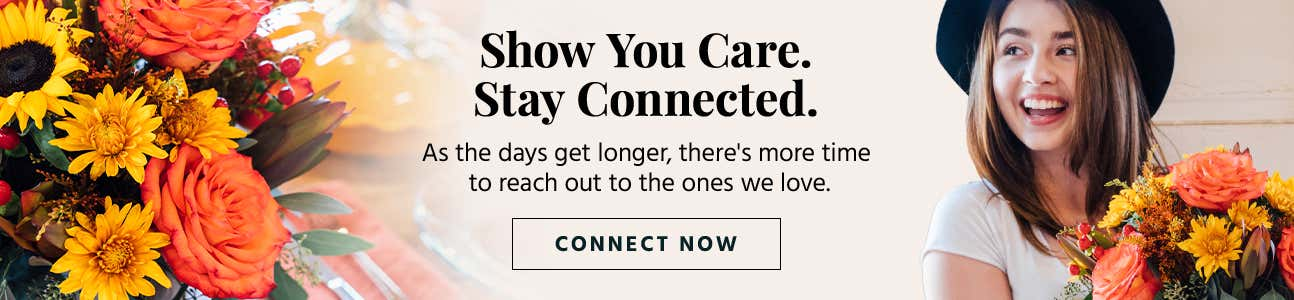 fall-connect-content-hub.jpg