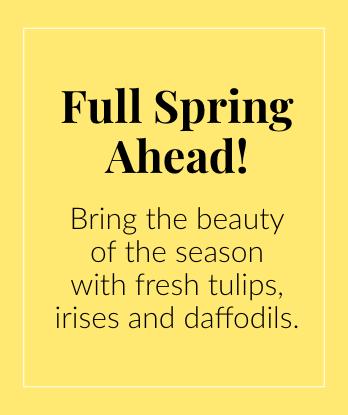 Full Spring Ahead