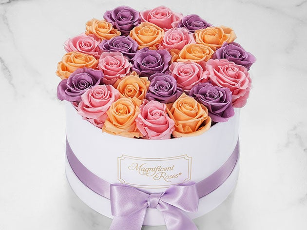 Magnificent Roses®