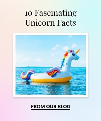 10 Fascinating Unicorn Facts