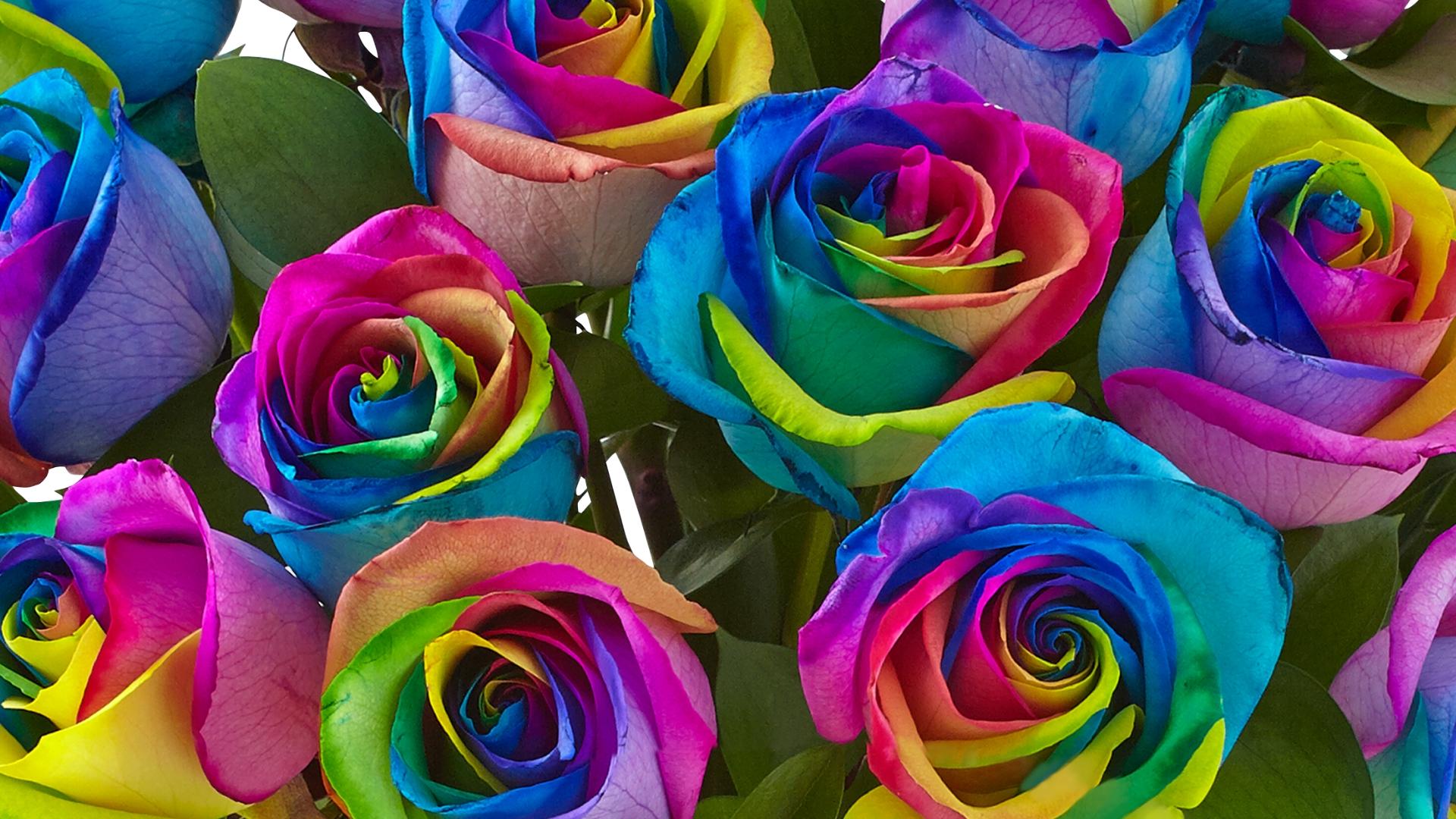Pride Bouquet 2