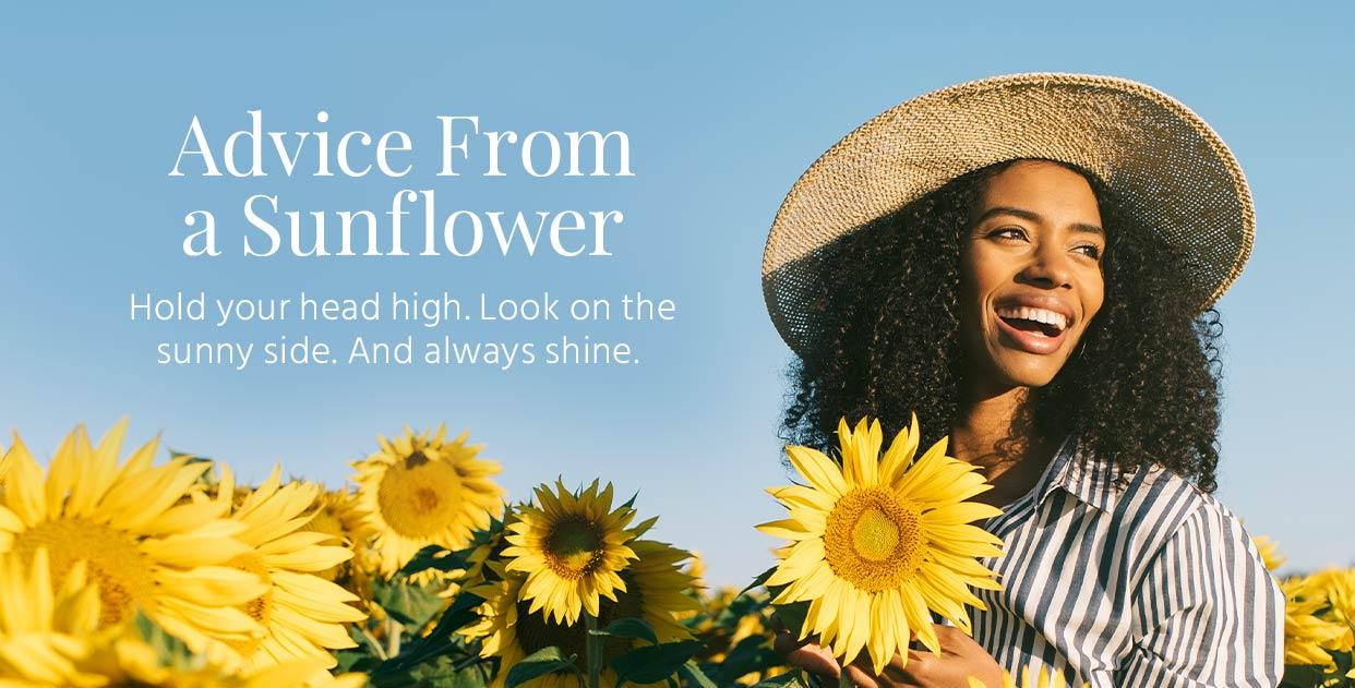 m-_IMOC-sunflower-festival.jpg