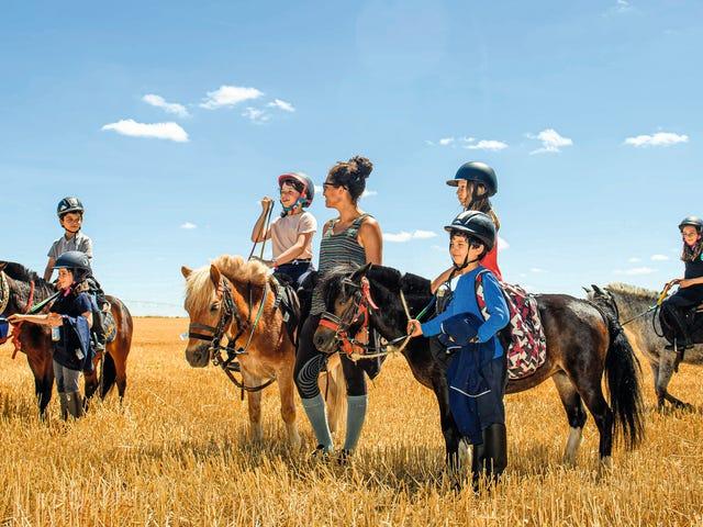 00091043-chesnoy-mineurs-equitation-Ok.jpg