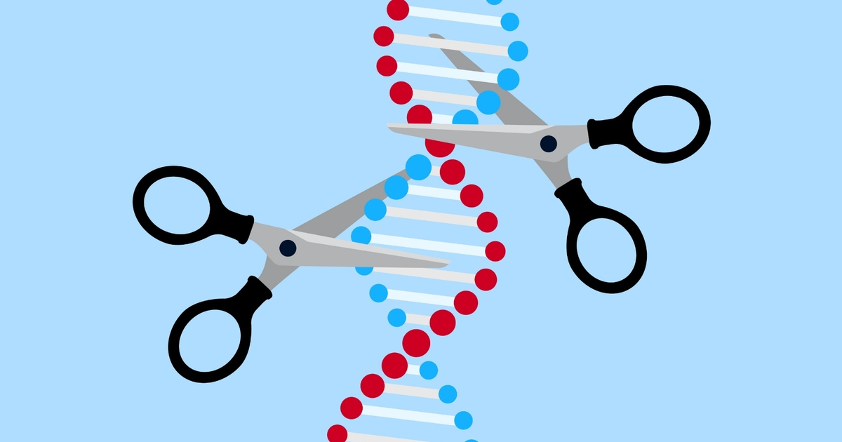 Genome Editing Techniques: The Tools That Enable Scientists to ...