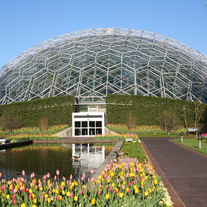 St_Louis_Climatron_Botanical_Gardens.jpg