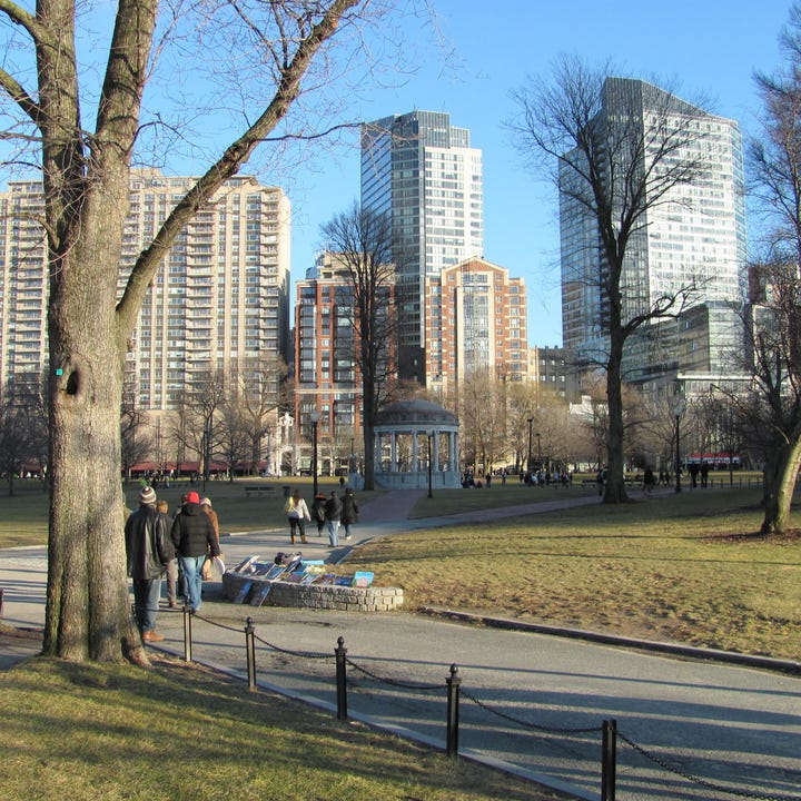 Boston_Common_January.jpg