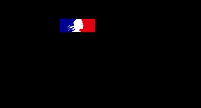 Customers Overview - Ministère des Armées