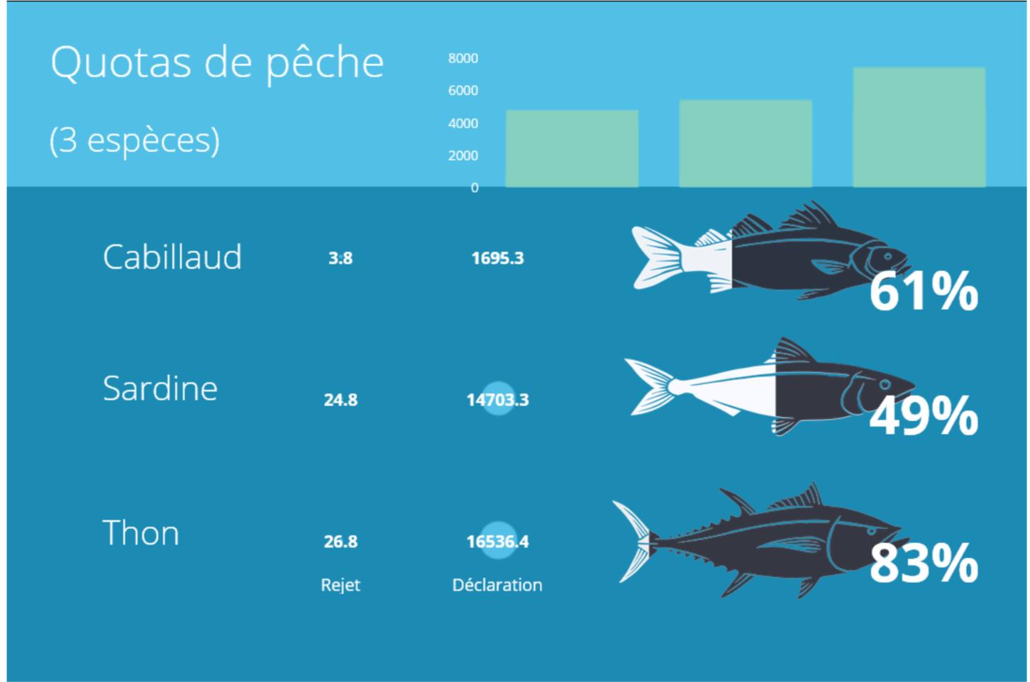 infographic-quotas-de-peche.png