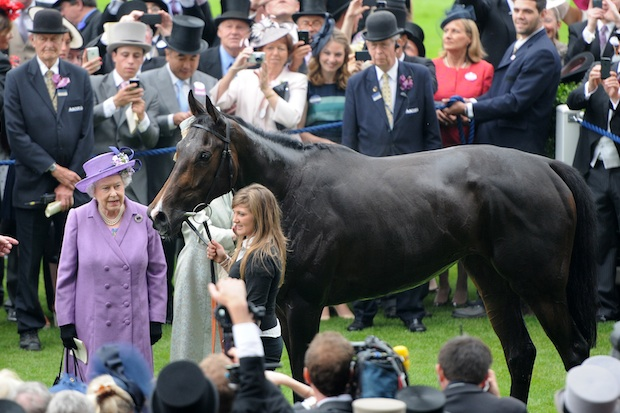 Estimate and The Queen after winning the Gold Cup in 2013