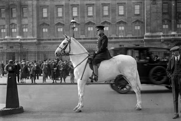 The lost horses of London