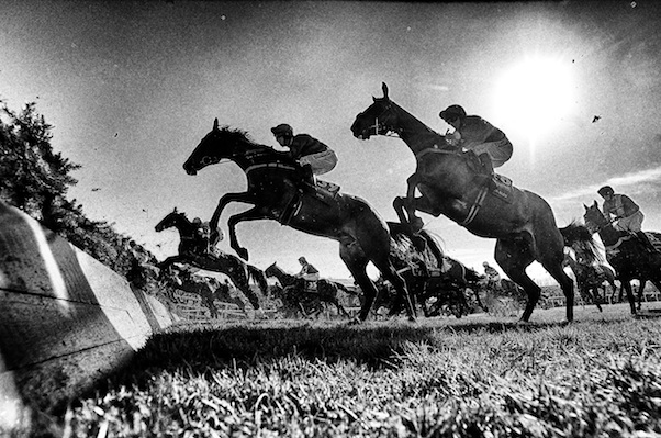 Will the Guardian and the Independent kill the Grand National?