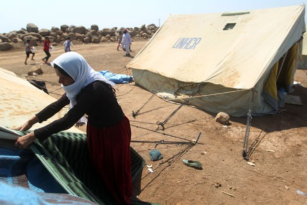 An Iraqi Yazidi refugee woman arranges a tent at the Newroz camp in north eastern Syria after fleeing advances by Islamic State jihadists in Iraq. Image: AHMAD AL-RUBAYE/AFP/Getty Images